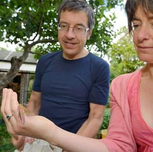 In de tuin van George Monbiot: het Schaapje (zeer tegen zijn zin)