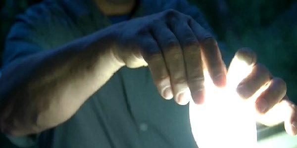 Leuk filmpje over nachtvlinderen in Technopolis