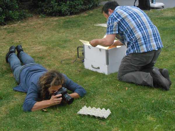 In de tuin van Bart Holvoet: zoomvlekspanner, een zeer zeldzame soort